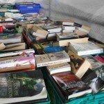 Delvin Book Fair 2010