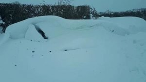 Seán Jones might be late for work today. Yes, there is a car in there somewhere.