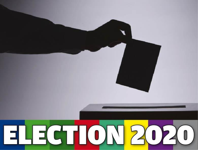 Election 2020 Meath West