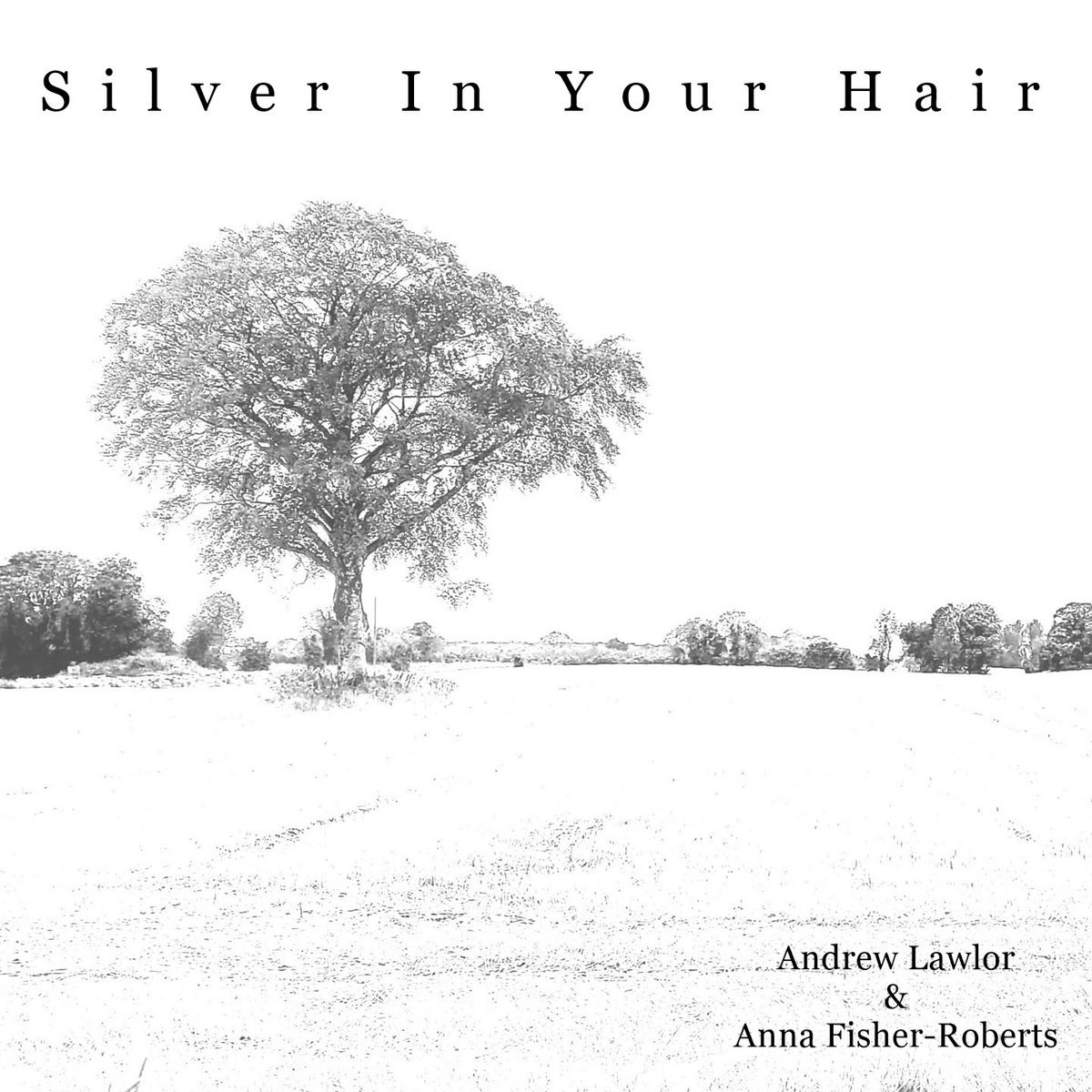 Silver In Your Hair